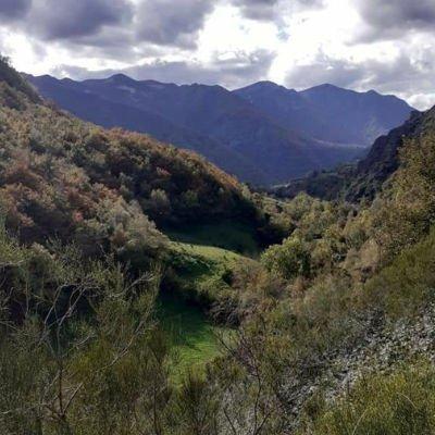 alojamiento-de-turismo-rural-en-Asturias.jpg