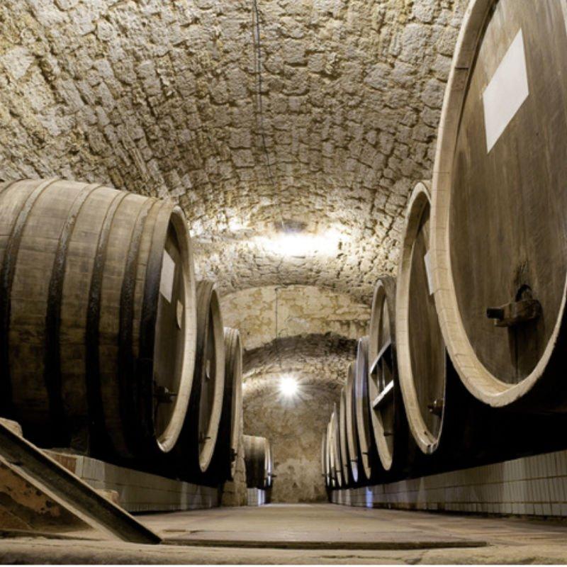 museo del vino de cangas del narcea